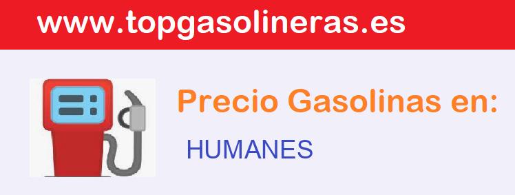 Gasolineras en  humanes